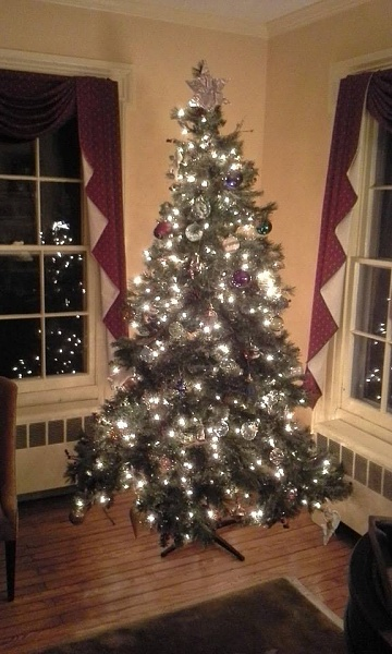 Click image for larger version.  Name:x-mas_tree.jpg Views:209 Size:72.0 KB ID:69957